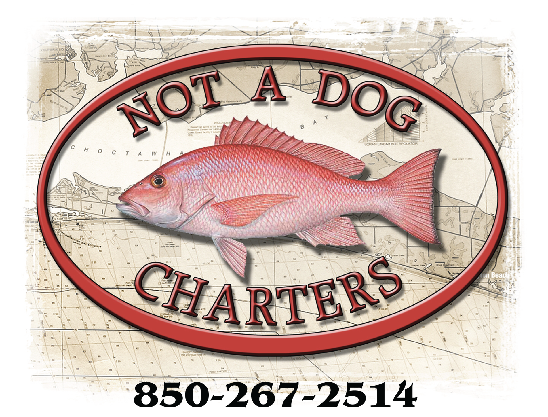 Not a Dog Charters